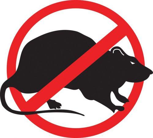 No Rats Union Oilfield Hard Hat Helmet Tool Box Contractor