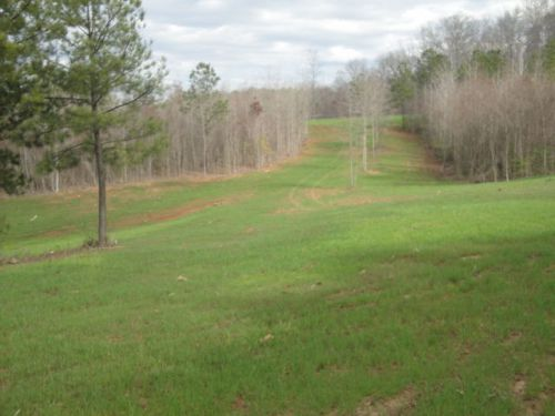 100+ acres hunting land tract talbot county ga